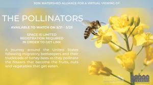 Film Series 2021: The Pollinators