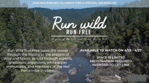 Film Series 2021: Run Wild Run
