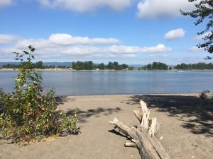 September Beach Cleanup Clean-Up (National Clean-Up Day) @ Wintler Community Park
